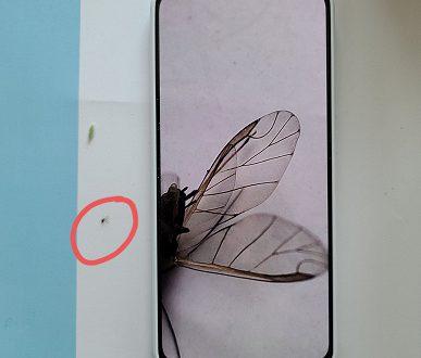 Redmi K30 Pro действительно можно использовать в качестве микроскопа