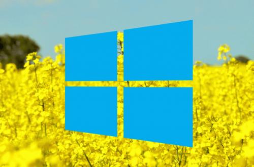 Стало известно, когда мы получим очередное крупное обновление Windows 10