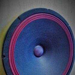 Ноэма 50ГДН-37  Двухполосная акустика своими руками.